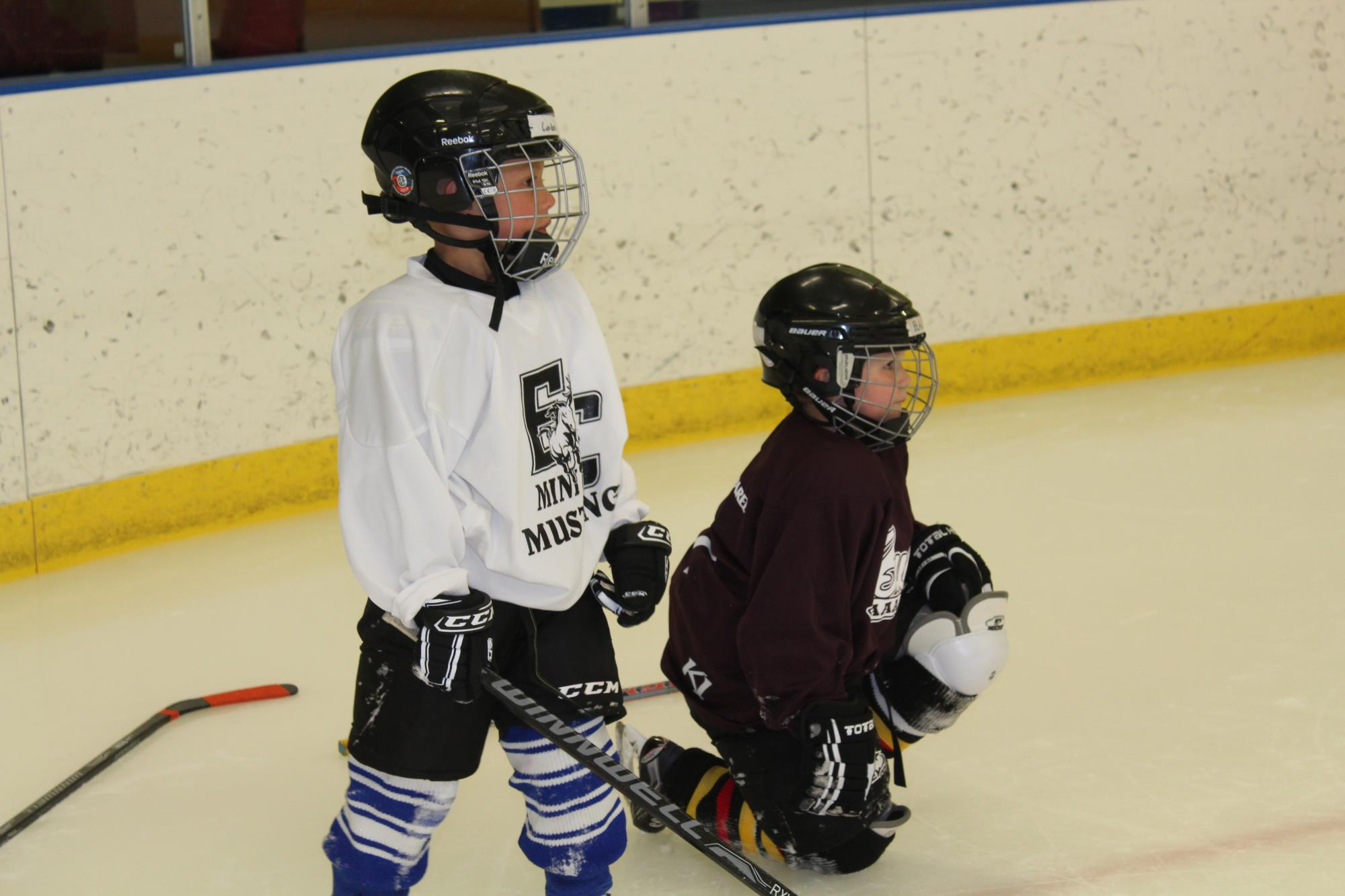 Intro to Hockey Summer, 2 young boys on ice